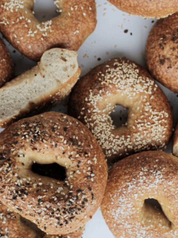 various kinds of bagels